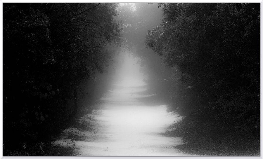 Chemin nblr