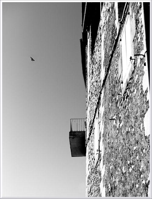 Balcon x