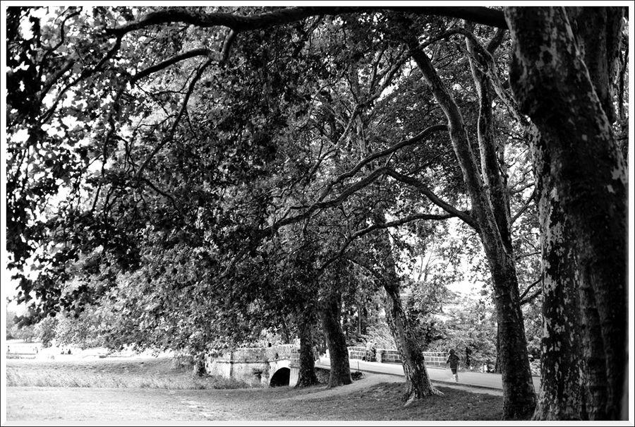 Loire 23 blg a