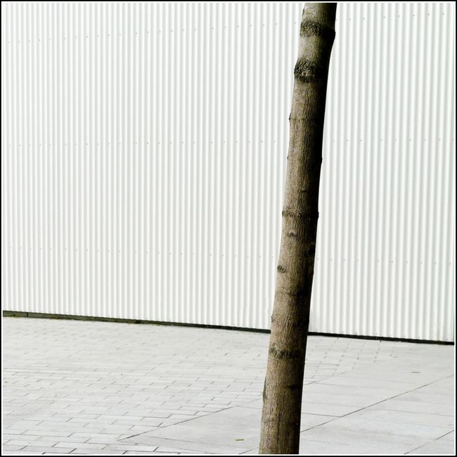 Leica seguin 04 14_-36