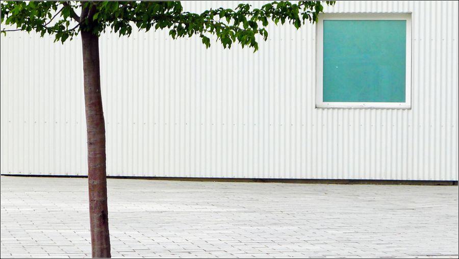 Leica seguin 04 14_-46