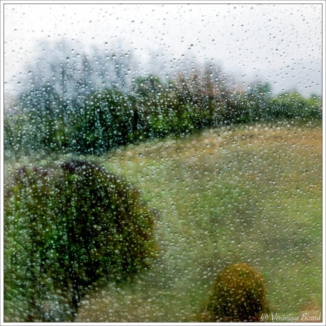 La pluie_