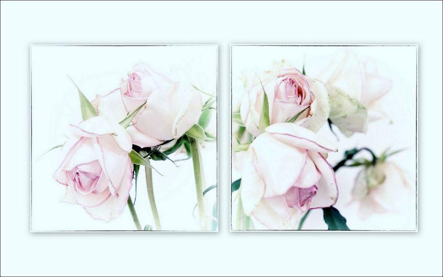 Diptyque roses fanées