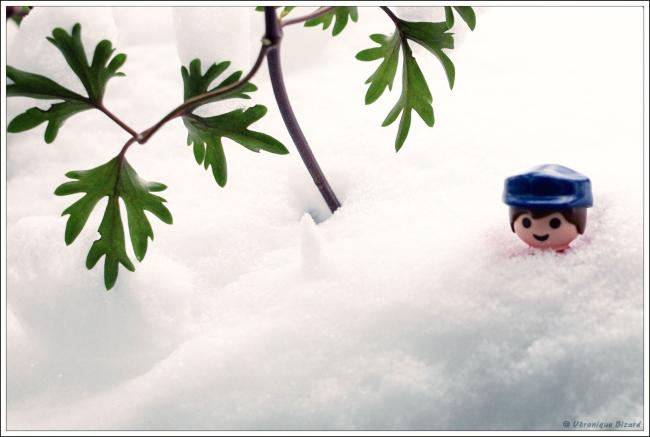 2-neige et ptit bonhomme lei-2