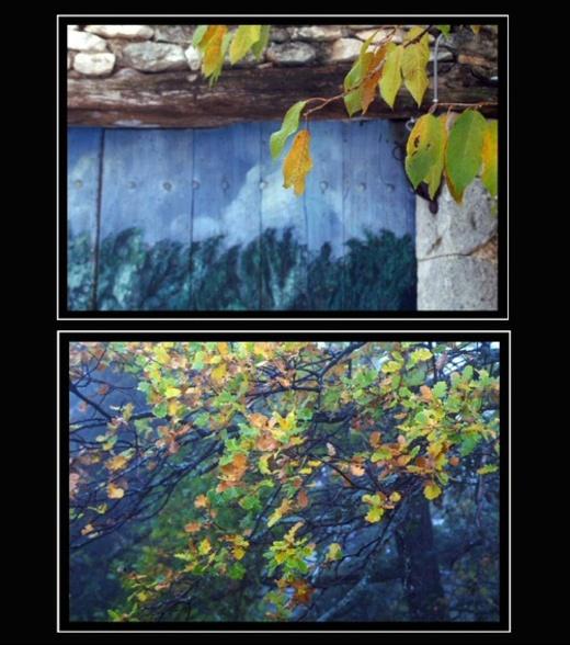 Variations_en_bleu_2_1